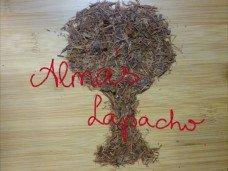 almaslapacho