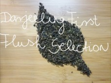 darjeelingfirstflushselection